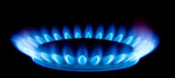 "Путин не подписа ""газовия договор"" с Китай заради цената"