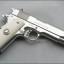 Град Нелсън наложи задължително притежание на оръжие