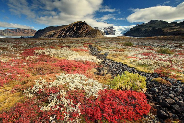 iceland-nature-travel-photography-12-5863c379e10a3__880