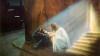 В този ден самият Господ броди по света! Ето какво може и какво не може да се прави!