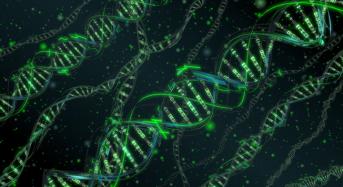 Промяната в ДНК поради прехода в новото измерение
