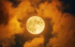 Днес е денят на Есенното Равноденствие! Ето защо астролозите обожават този ден