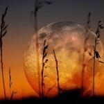 Магията на Пълнолунието през октомври - използвайте я