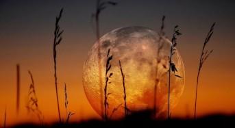 Магията на Пълнолунието през октомври – използвайте я