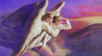 Какво работят ангелите и за какво си говорят?