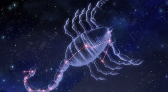 """Защо Скорпионът е най-важният знак на Зодиака, """"ангел,  танцуващ в нощта"""""""
