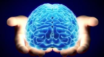 Отговорете на тези 2 въпроса, за да определите вашия Коефициент на интелигентност (IQ)!