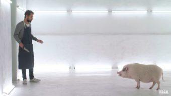 Месарницата: Мини-филм за ресторант, където посетителите трябва да убиват храната си (видео)
