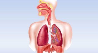 Доказано: Краткото гладуване рестартира тотално имунната система и възстановява организма!