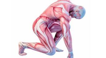 Д-р Сергей Бубновски: 5 секунди   лечение със студ или болки в ставите за цял живот!