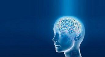 5 навика, с които реално ще възстановите мозъчните си клетки!