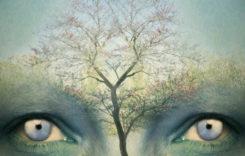 10-те нива на съзнанието – на кое ниво се намирате вие?