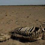 Невидимата заплаха- Учени: За спасяването на Земята от климатична катастрофа са необходими 2,5 трилиона долара!