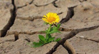 7 могъщи думи: Не пилейте енергията си в негативни ситуации
