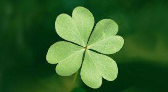 Десет думи с мощна енергия, които привличат късмет